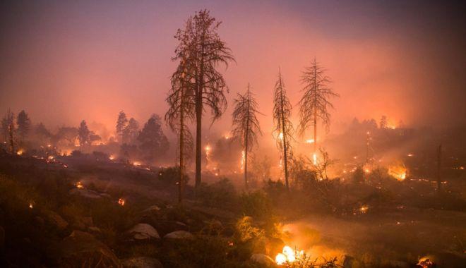 Foto: Incendiu în SUA: 42 de morţi,  bilanţul cel mai grav din istoria Californiei