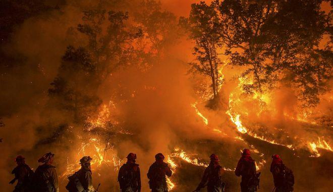 Foto: Incendii în Amazonia. Brazilia acceptă în cele din urmă ajutorul financiar extern
