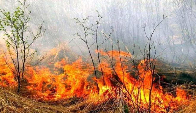 Foto: DEZASTRU LA HÂRŞOVA! Ard hectare de vegetaţie uscată! Pompierii sunt chemaţi de acasă!