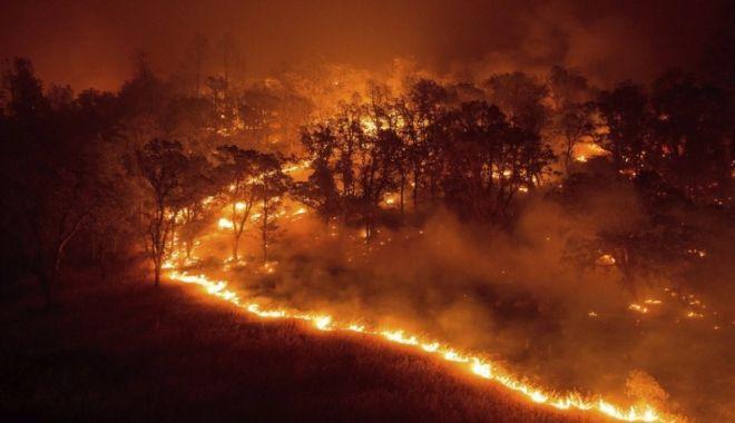 Foto: IMAGINI TERIBILE! Cel puţin 50 de morţi, în incendiile de vegetaţie din Grecia