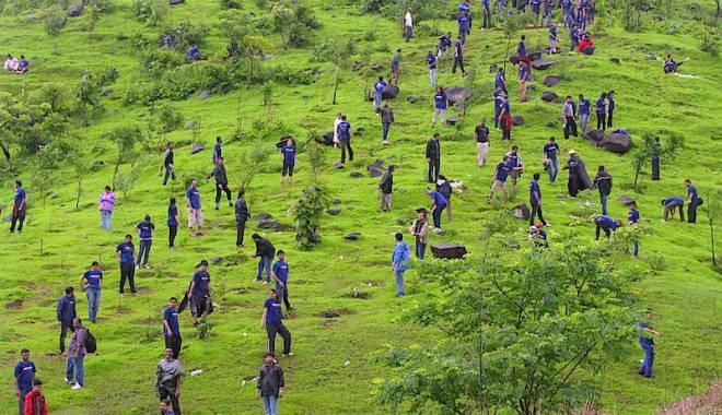 Foto: Încep înscrierile pentru campania de împădurire