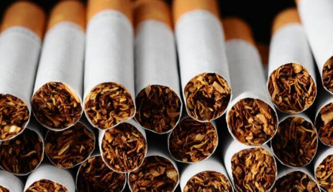 Industria tutunului ar putea contribui mai mult la bugetul de stat - industriatutunului-1617814147.jpg