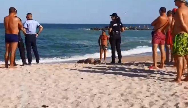 VIDEO / Persoana dispărută ieri, la Eforie a fost găsită şi scoasă la mal! - inecat2-1533306664.jpg
