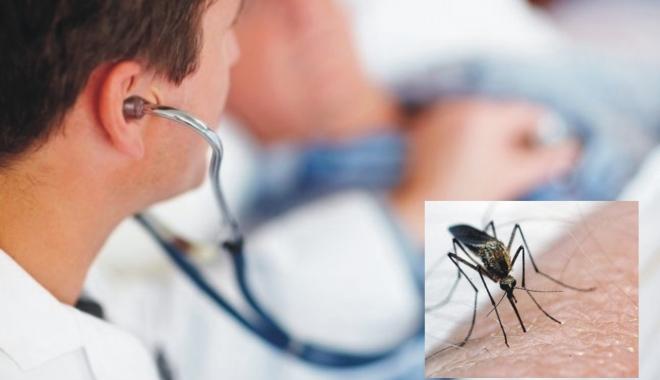 Virusul West Nile a apărut şi la Constanţa. Iată cum se manifestă boala