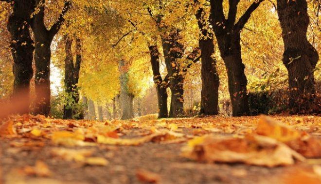 Foto: ANM a anunțat prognoza METEO. Cum va fi vremea în Dobrogea până la începutul lunii noiembrie