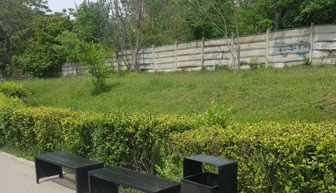Primăria montează coșuri de gunoi în Constanța - infrumusetarideprimavarabun-1558122198.jpg