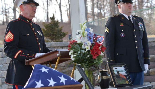 De așa ceva nu ați mai auzit! Înmormântare cu onoruri militare pentru un căţel - inmormantarecuonoruri-1624470116.jpg