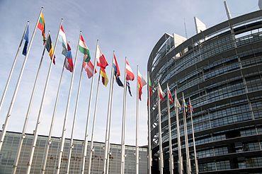 Foto: Europarlamentar PSD şi-a anunţat retragerea candidaturii pentru un nou mandat în Parlamentul European