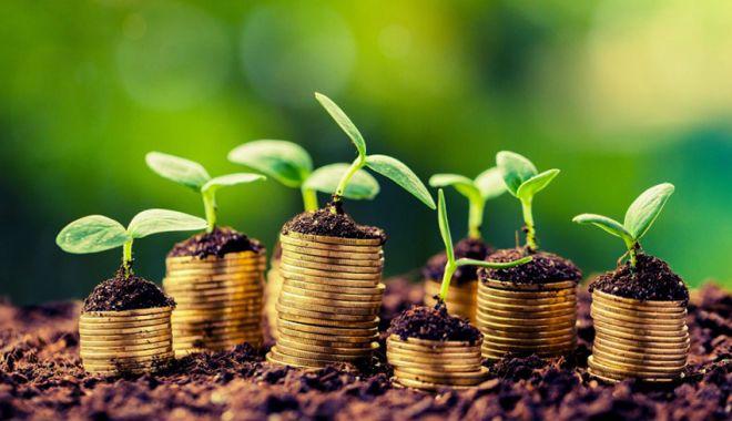 Foto: Instrumentele financiare pentru agricultură, în dezbaterea UE
