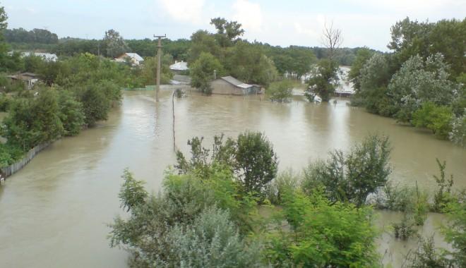 Foto: COD PORTOCALIU pe Dunăre / Sute de hectare de terenuri agricole, păduri şi păşuni, inundate