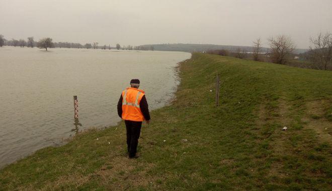 Foto: Galerie foto. Dunărea ameninţă drumurile judeţene din Constanţa!