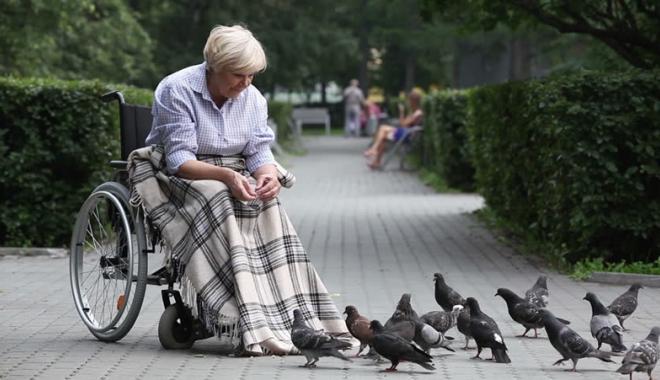 Foto: Bani mai mulţi pentru însoţitorii invalizilor