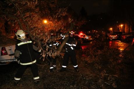 Codul galben a făcut ravagii. Panouri luate de vânt pe A2. Copaci căzuți și mașini avariate - isubucurestiilfov136735900-1550905194.jpg