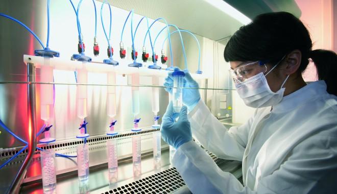 Foto: Târg de recoltare gratuită a celulelor stem