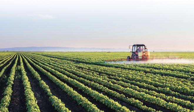 Terenurile din extravilan pot fi scoase din circuitul agricol - legeterenuri7-1608041327.jpg