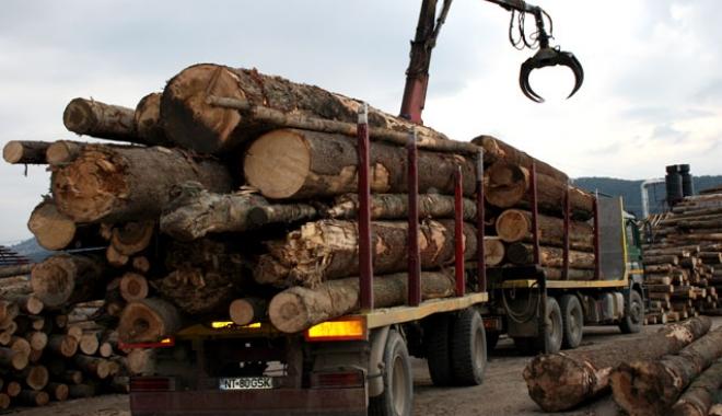 Foto: Transportul cu lemne din judeţul Constanţa, luat la puricat de poliţişti