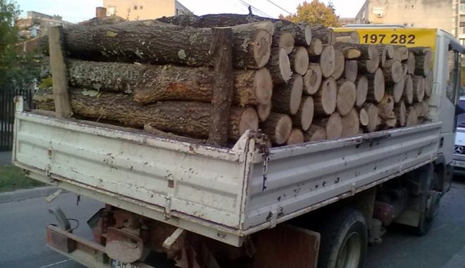 Foto: Primăria Constanţa distribuie ajutoarele pentru încălzirea locuinţei