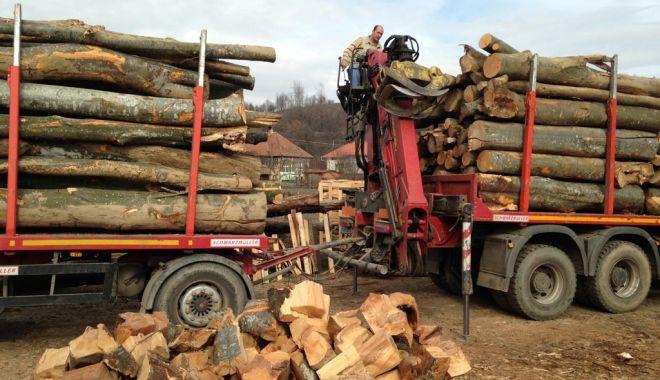 Romsilva pune la dispoziția populației peste un milion de metri cubi de lemn pentru foc - lemnedefoc-1599066121.jpg