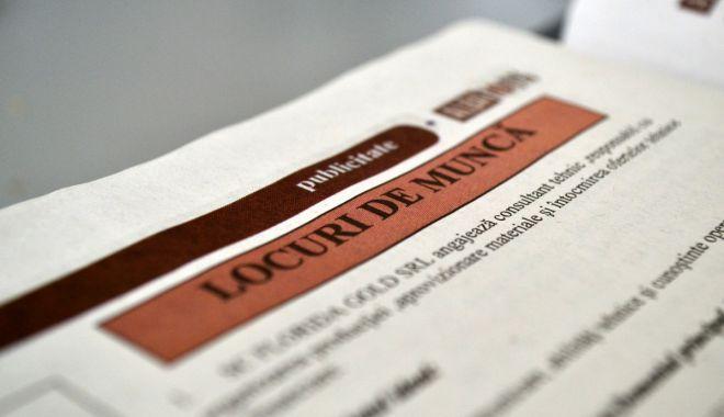 Foto: Ce oferte de muncă le mai sunt oferite șomerilor