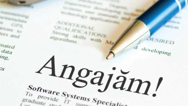 Câți români și-au găsit loc de muncă anul acesta - locuridemuncaarges-1561553306.jpg