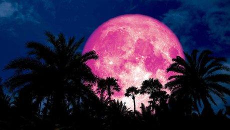 Foto: Luna roz 2019. Fenomenul care ne va ține cu ochii pe cer