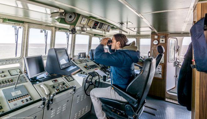 Foto: Lupii de mare vor scăpa de birocrație