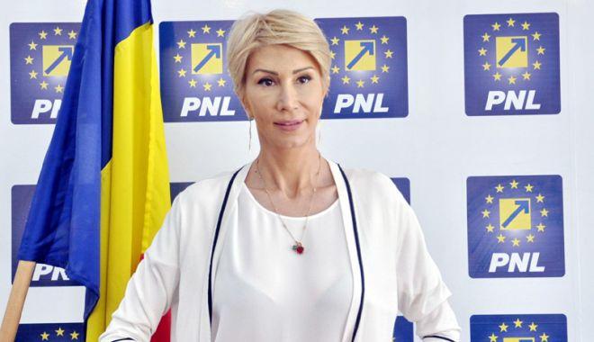 """Foto: """"Majoritatea  PSD-ALDE  urmăreşte amputarea atribuţiilor preşedintelui"""""""