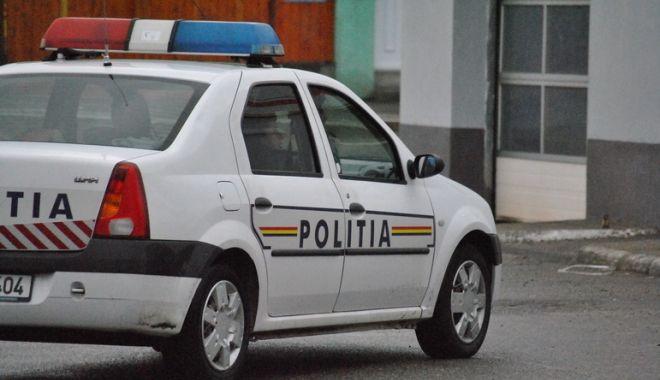 Foto: 79 de stâlpi de beton, furaţi de nouă tineri! Poliţiştii din Constanţa au întocmit dosare penale