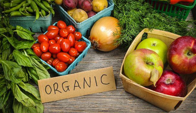 Foto: Măsuri pentru extinderea agriculturii ecologice