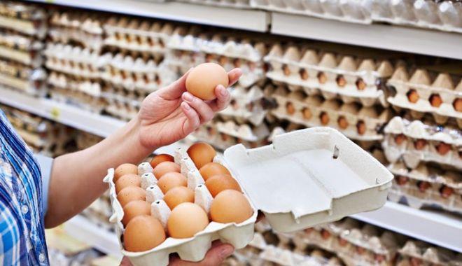 Foto: ALERTĂ! Peste 200 de milioane de ouă retrase de pe piață din cauza îmbolnăvirilor cu salmonella