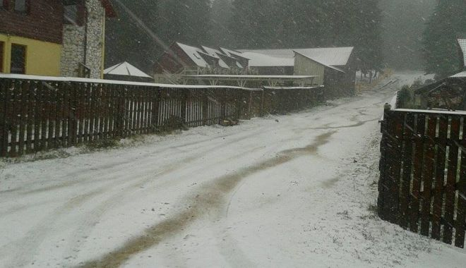 Lapoviță și ninsoare în munții Rodnei, la peste 1.200 de metri altidudine - muntiirodnei-1632320090.jpg