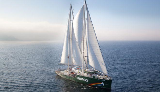 Foto: Nava Greenpeace, în premieră, la Constanţa. Cum o puteţi vizita