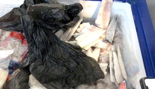 Foto: Nereguli grave! De patru ori mai multe unităţi alimentare închise de OPC, vara aceasta, faţă de anul trecut