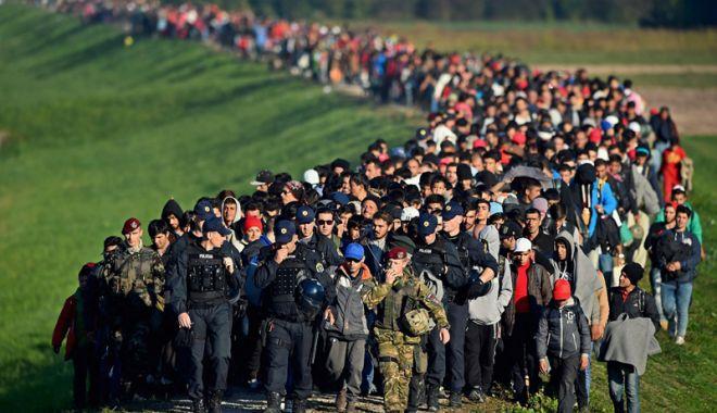 Foto: Numărul cererilor de azil în UE s-a redus  la jumătate, anul trecut, față de 2016