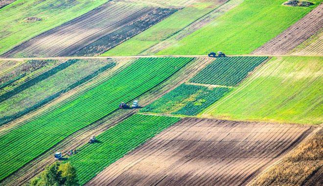 """Terenurile agricole, vândute mai greu străinilor. """"Nu este uşor să te baţi cu ei"""" - nunevindem-1606158900.jpg"""