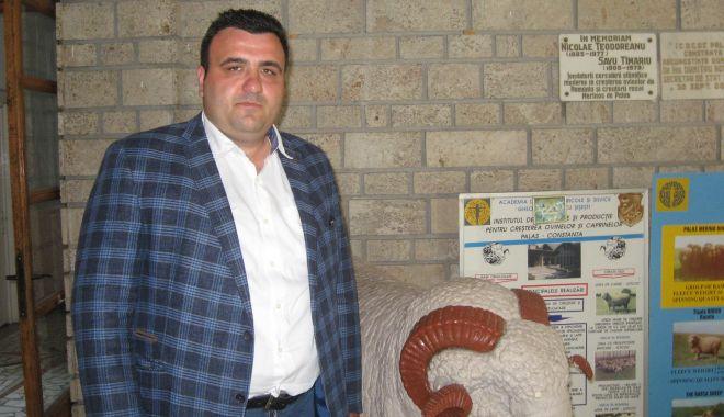 Oaia românească se vinde bine pe piața arabă, dar visează să ajungă în Occident - oaiaromaneascasevindeiancupolifr-1559943085.jpg