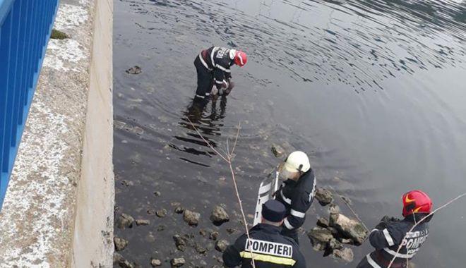 Foto: O angajată a Primăriei Medgidia s-a sinucis din cauza problemelor de sănătate