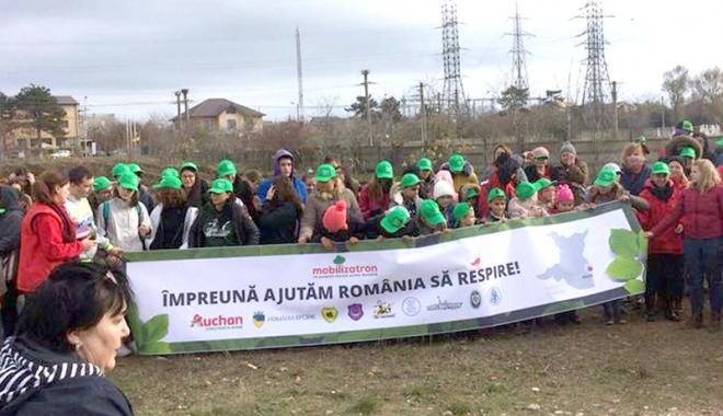 Foto: Oază de verdeaţă la Eforie Nord. Voluntarii au plantat 5.000 de puieţi