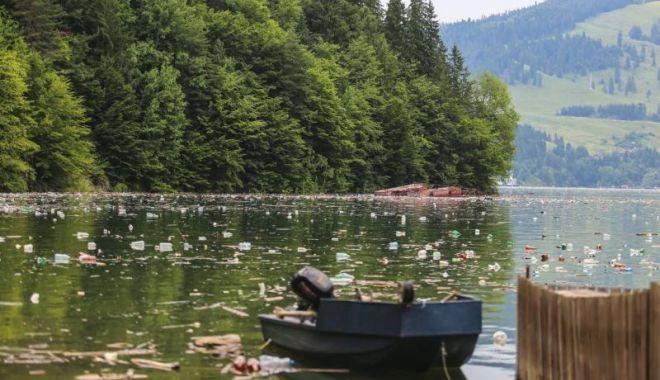 Reacția Hidroelectrica privind gunoaiele de pe lacul Bicaz - odawjmhhc2g9mdm5ndu5nddhn2i3mtyx-1531322754.jpg