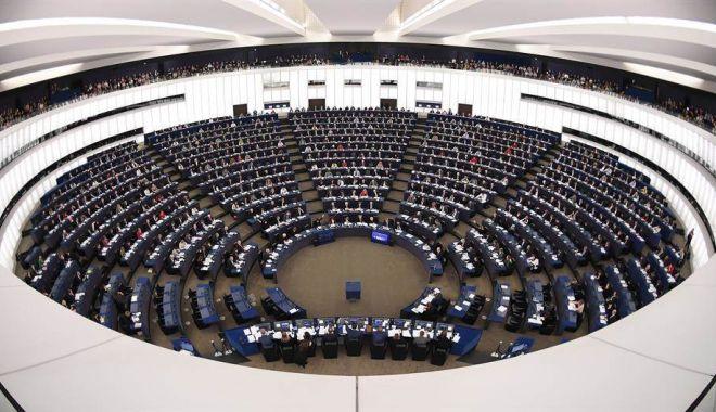 Foto: Alegeri europarlamentare, rezultate finale. Liberalii - 10 mandate