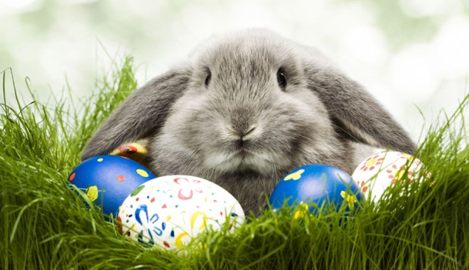 Paște Fericit! - pastecosuricadouricorporate2560x-1334252493.jpg