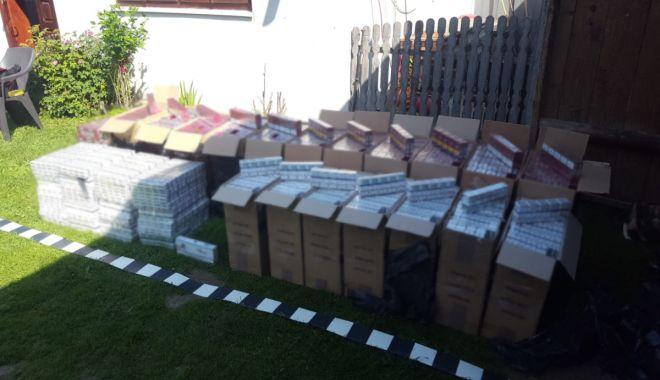 Percheziţii la contrabandiştii de ţigări. Zeci de mii de pachete, confiscate de polițiștii de frontieră - perchezitiitigari2-1560321568.jpg