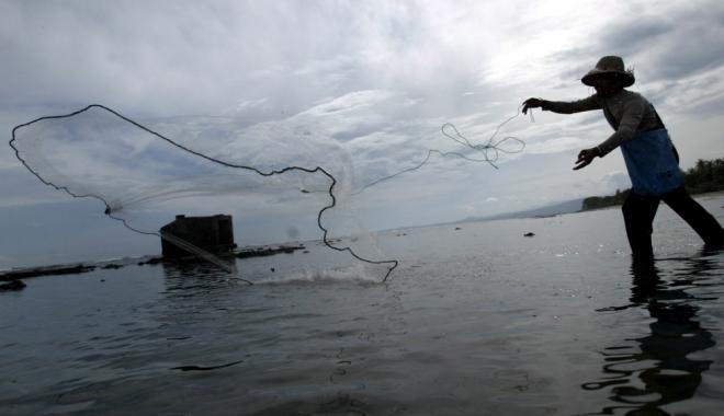Foto: Peste 100 de kilograme de peşte, confiscate de poliţiştii de frontieră