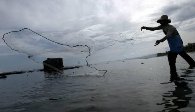 Foto: Sute de kilograme de peşte confiscat de poliţişti, în Lumina