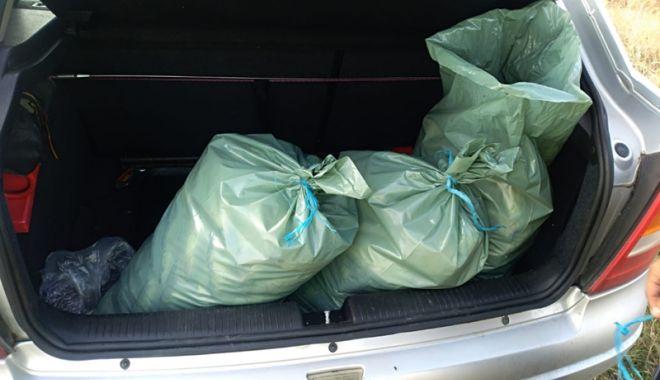 Foto: Zeci de kilograme  de peşte fără documente legale, confiscate  de poliţiştii de frontieră