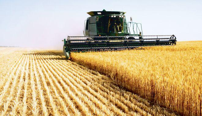 Piața terenurilor agricole mustește de oferte. Iată prețurile cerute de vânzători! - piataterenuriloragricolemusteste-1565353279.jpg