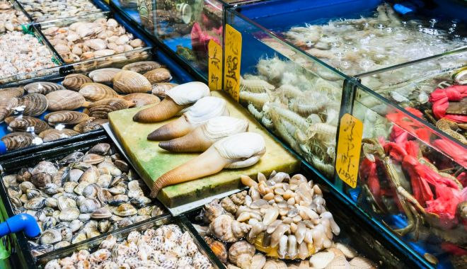 OMS cere interzicerea vânzării de animale vii în piețe - piataumeda1-1618306613.jpg