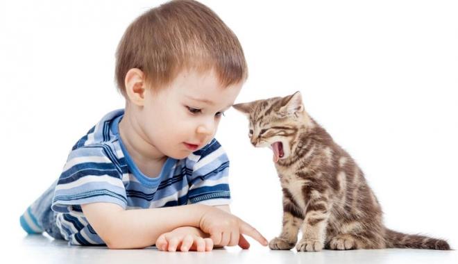 Foto: Pisica Mog îşi face apariţia printre copii