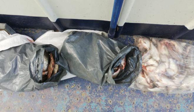 Foto: Plase de pescuit și peşte fără documente legale, confiscate de poliţiştii de frontieră