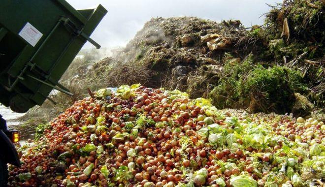 Foto: Platforma dedicată prevenirii risipei alimentare